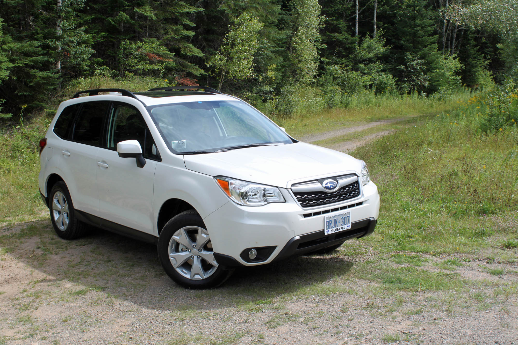 Image result for White 2014 forester